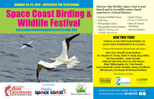 Coming in January, the Space Coast birding and Wildlife Festival!